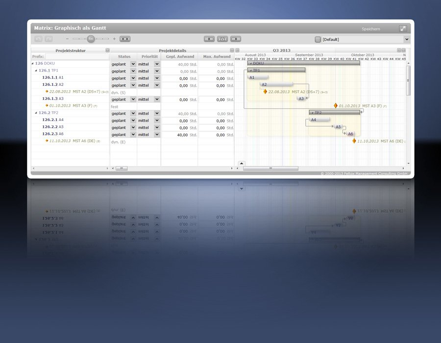 1. Produktbild fx-project - webbasiertes Projektmanagement