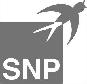 Firmenlogo SNP Schneider-Neureither & Partner AG Heidelberg