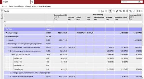 4. Produktbild IDL.KONSIS Standard Report