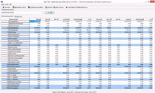 2. BWA Manager/ Softwarel�sung f�r Steuerberater/Unternehmer/Speditionen