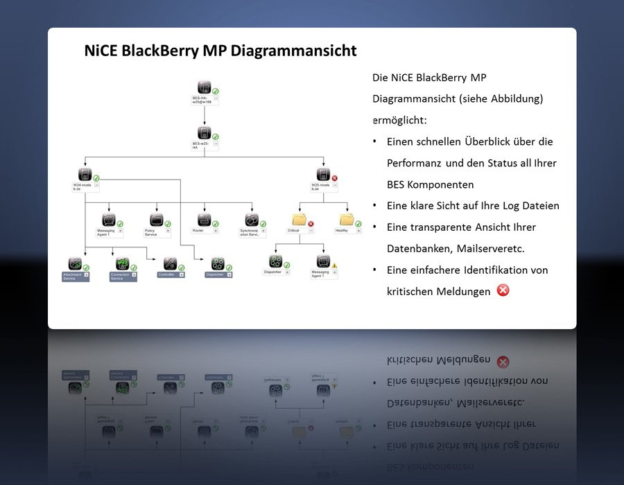 1. Produktbild NiCE BlackBerry MP, �berwachen des BlackBerryServer mit Microsoft