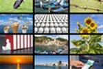 Software zur Verwaltung von Medien- und Bilddaten f�r einen Natursteinhandel gesucht