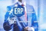 Exportunternehmen sucht neue ERP-Software