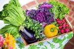 Catering-Unternehmen für KiTa- und Schulverpflegung sucht ein Warenwirtschaftssystem